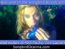 Songbird Ocarina With Docjazz4