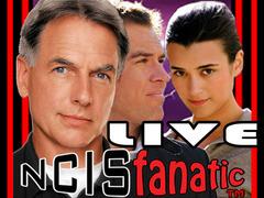 NCISfanatic L